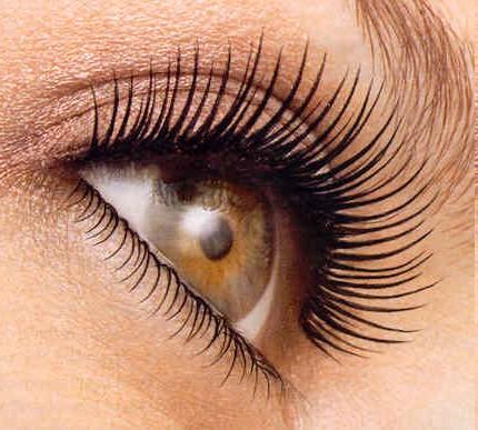 Eyelash Perming...